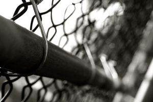 Fence - Closer by Calzinger