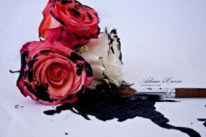 paint black those roses you gave to me by AdamsCurse