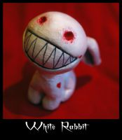 The White Rabbit by Ciuin
