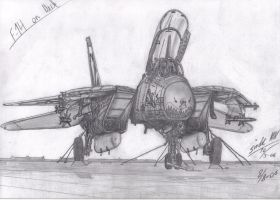 Remake of F-14 On The Deck by SindreAHN