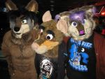 June Furbowl 6 by Rennon-the-Shaved