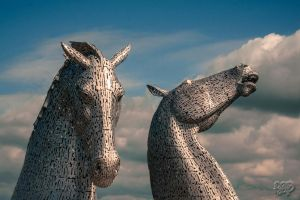 Haud Yer Horses... by SnapperRod