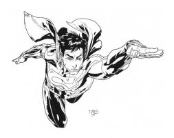 Superman inks 3 by JosephLSilver