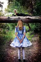 Alice Meets the Cheshire Cat by headsno2
