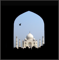 Enter the Taj by Shadowfax2009