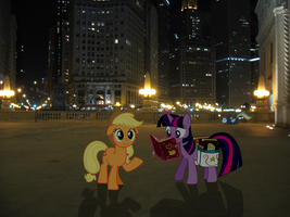 Ponies Hanging Out In Chicago by statoose