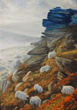 Fell Sheep by Hareguizer