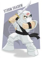 Meejitz - Storm Shadow by happymonkeyshoes