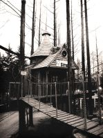 Welcome to the Treehouse by Reichenbach