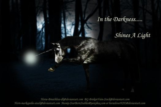 In the Darknesss by horselover9292