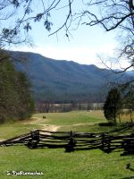 Tennessee by livelysmile