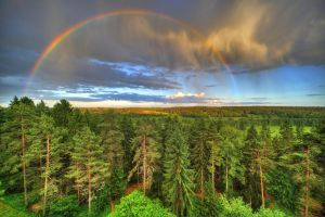 Rainbow by mnystrom2