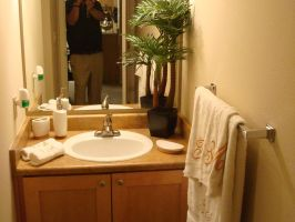 New Apartment - Bathroom 2 by silver6162
