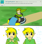Ask Skyward Link and Wind Link 316 by LinkofSkyWind