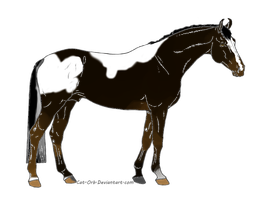 Shrubb Stallion Import #1 by WritingDirectioner