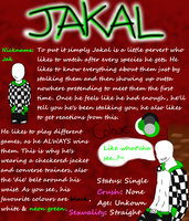 ~!Jakal Ref Sheet!~ by Prettyxmouse