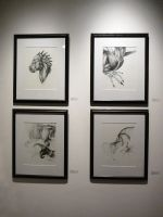 Think:Make Exhibition - Romanian Three-Tail Study by LeccathuFurvicael