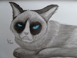 Inktober-Day 19: A cat a little too grumpy by th55th