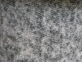 Textures: Carpet 001 by VicariousStock