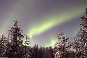 Northern Lights by jsanna