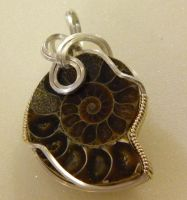Ammonite in silver with gold accent by DPBJewelry