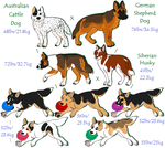Three-Breed Mix Request by Leonca