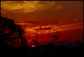Albury - the sun rises 1 by wildplaces