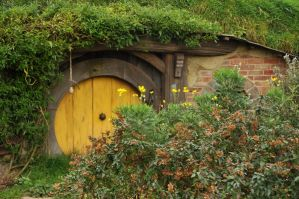 Smial in Hobbiton 02 by vigshane
