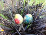 Yummy yummy inedible Easter eggs! by gwen124