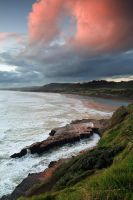 Pink Muriwai by chrisgin