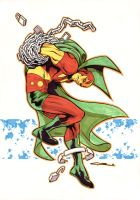 Mister Miracle by Cinar