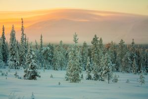 Lapland by Esveeka-Stock
