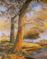 Rural scenery oil paint by Boias