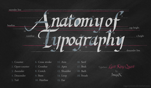 Anatomy of Type by sugarunicorn