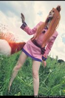 Spice and Wolf 7 by Eletiel