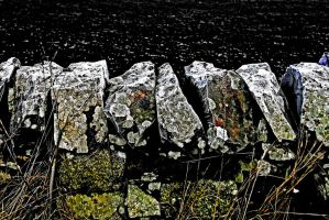 Drystone+Frost by Coigach