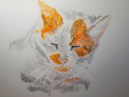 Painting of an orange Tabby Cat by mayIdrawyou
