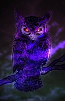 Night Owl by Nanaga