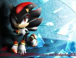 Shadow the Hedgehog by Icy-Cream-24