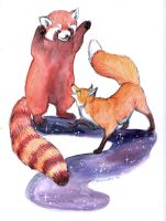 Red Panda and Fox Playing by Stormslegacy