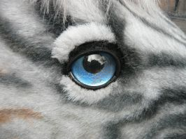 Zorse eye detail by LilleahWest