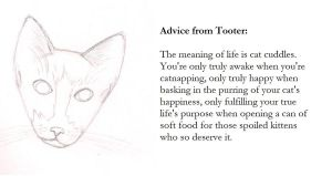 Interlude: Advice from Tooter by UmbraeCalamitas