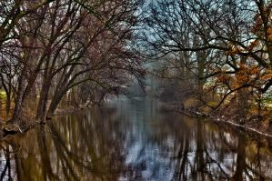The banks of the Red Cedar by quetwo
