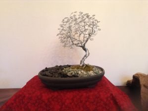 Image by BlairsWireBonsai