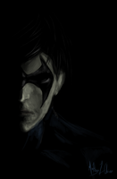 Nightwing by Lasse17