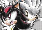 shadow and silver by chicaramirez