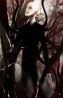 Slender by TyrineCarver