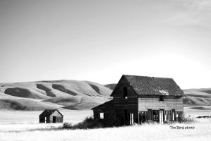 Old House in the Field by dislexicpalindrome
