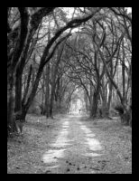 The Path by crayonstochaos