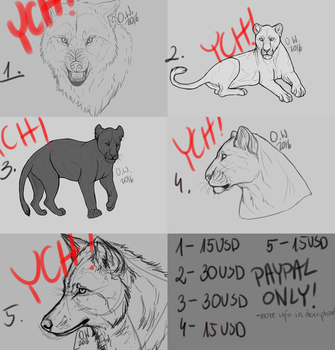 YCH'S: PAYPAL ONLY by xCollecx